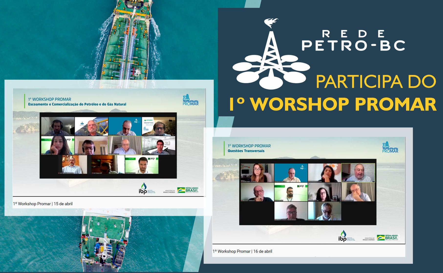 Rede Petro-BC participa do 1º Workshop do Promar